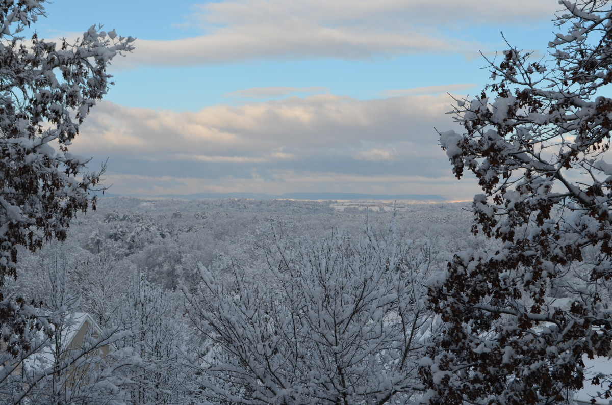 Winter View from Fuller's Ridge in Chattanooga